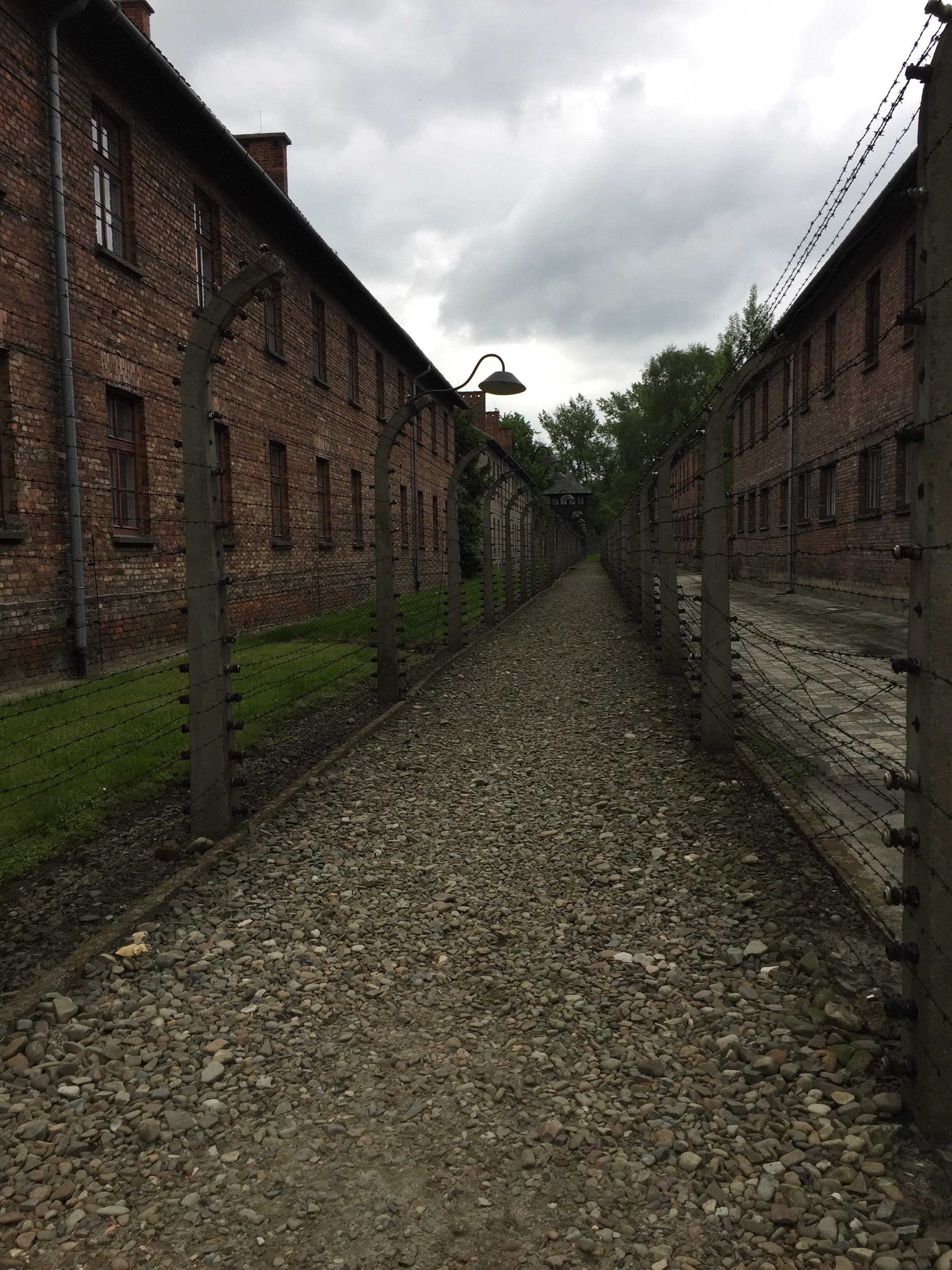 A Visit to Auschwitz - fences